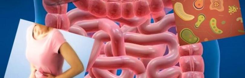 Дисбактериоз кишечника – симптомы и лечение