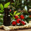 Масло шиповника – польза и вред, как принимать