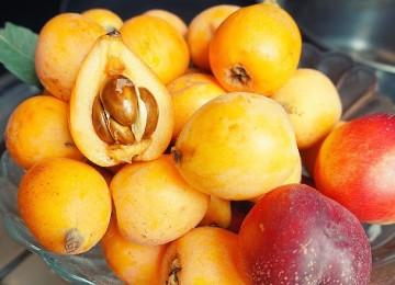 Мушмула – что за фрукт