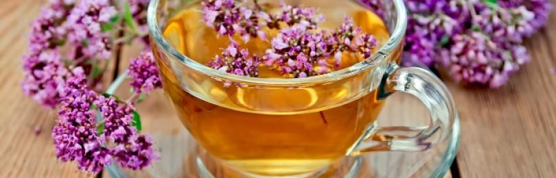 Чай с душицей – польза и вред