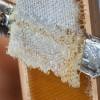Забрус пчелиный – что это такое