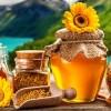 Горный мед – полезные свойства и противопоказания