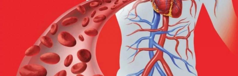 Нарушение кровообращения – что делать