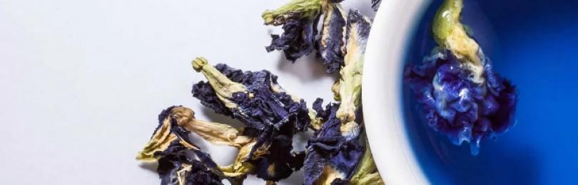 Синий чай – польза и вред