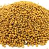 Горчица в зернах – как использовать в кулинарии