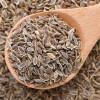 Семена укропа – лечебные свойства и противопоказания