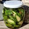 Лечебные свойства настойки на водке сосновых шишек