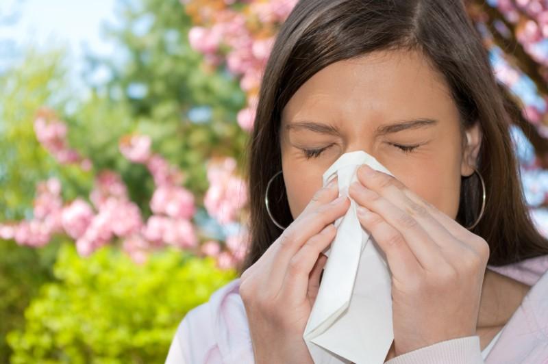 Череда от аллергии