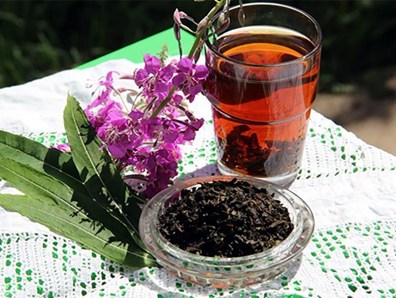 Правильно заваренный иван-чай