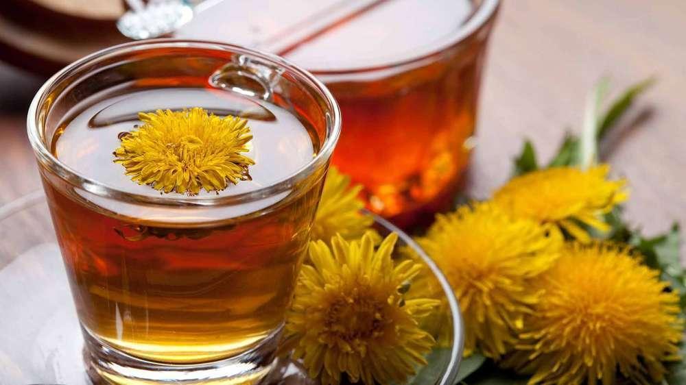 Чай из свежих цветков одуванчика