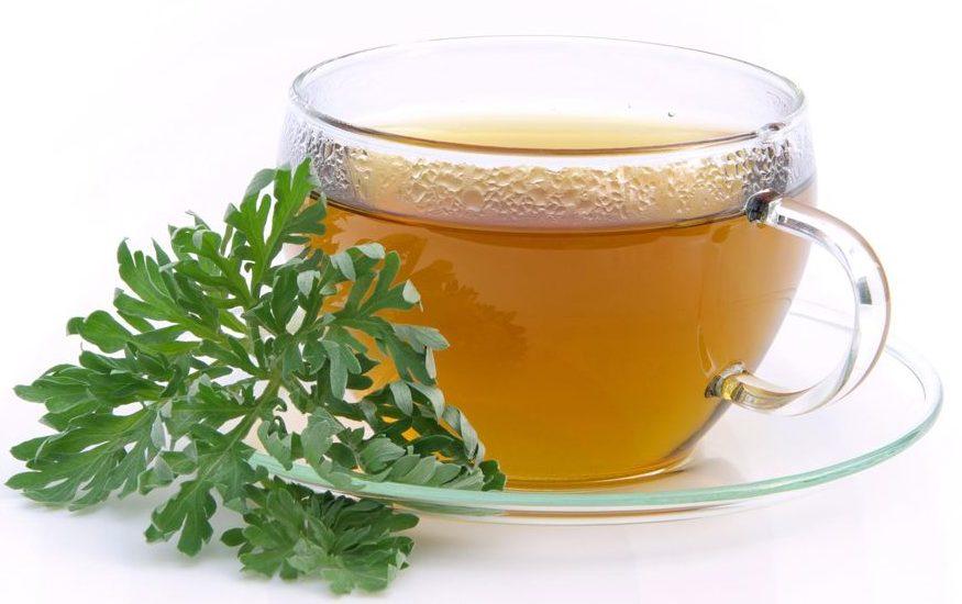 Чай из пустырника