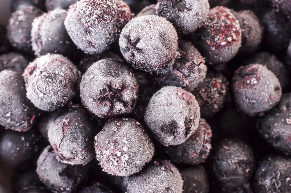 Замороженные ягоды рябины