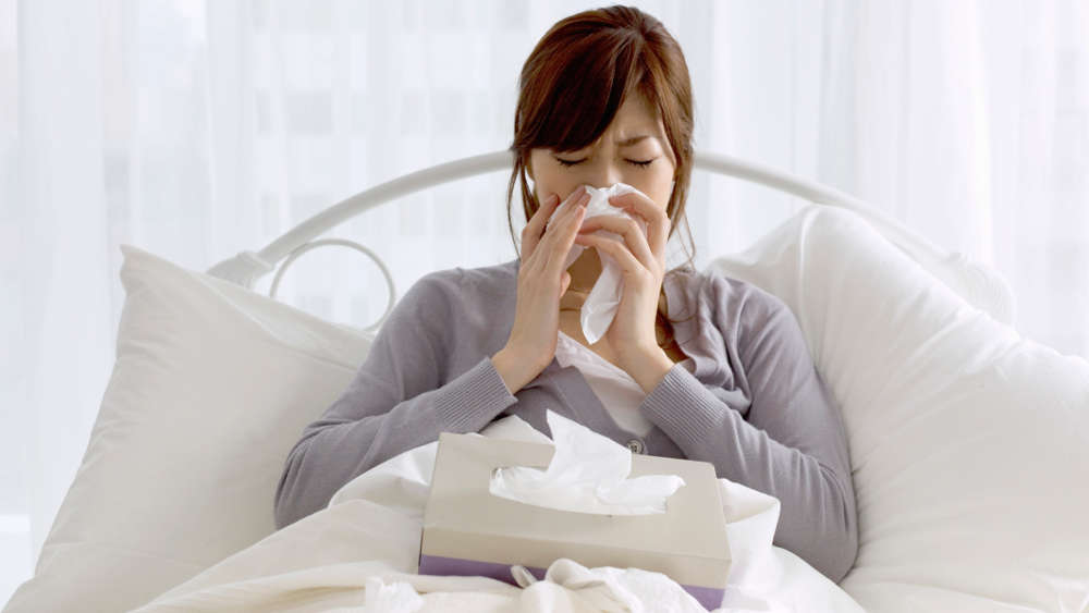 Мелалеука от простуды