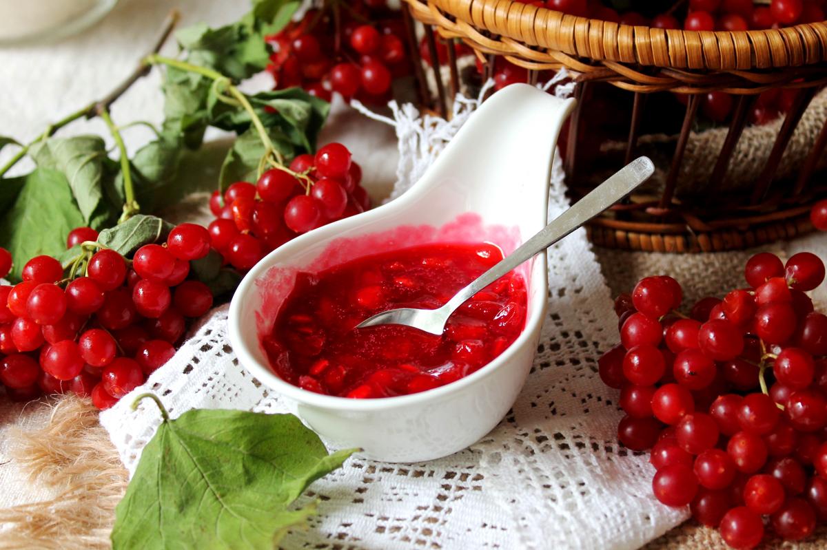 Протертые ягоды калины