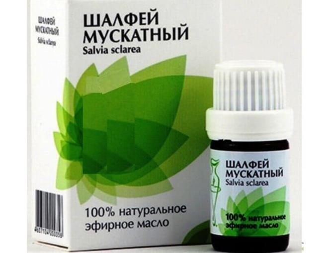 Шалфей лекарственный