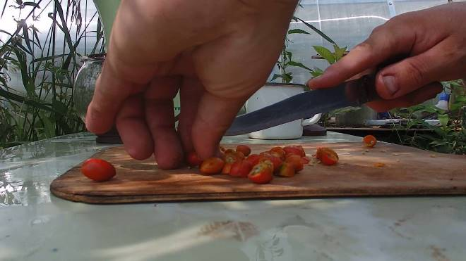 Как заваривать шиповник сушеный