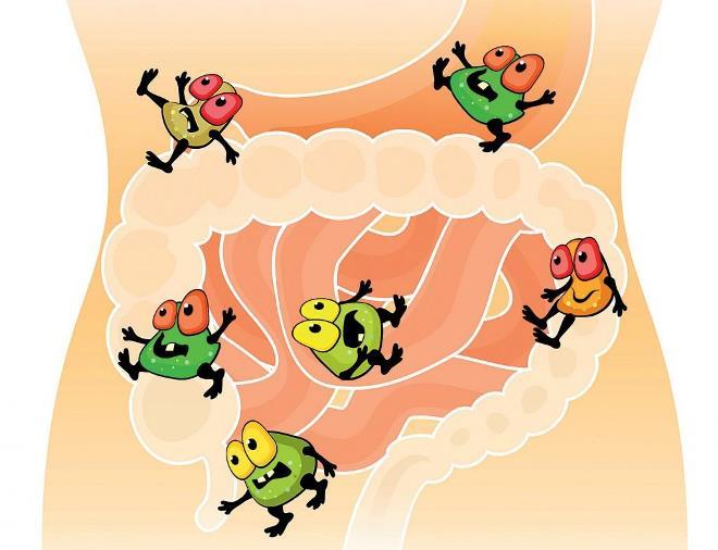 Лечение кишечника народными средствами