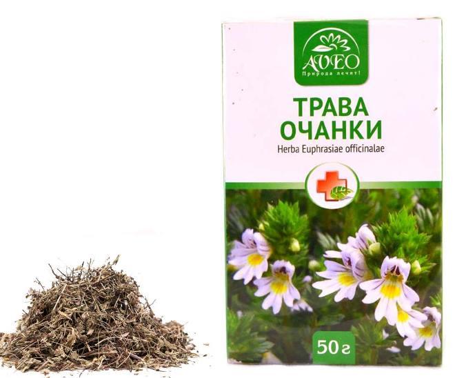 Очанка – трава