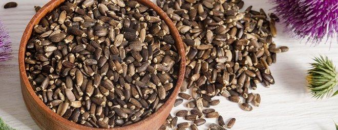 как приготовить отвар из семян расторопши